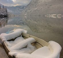 Lake Bohinj in Winter by Ian Middleton