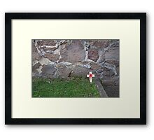 Poppy Day Framed Print