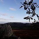 Roche Rock View  by dopeydi