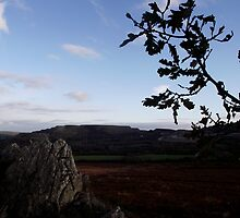 Roche Rock View  by dopeydi