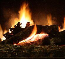 Fireplace II by Ginger  Barritt