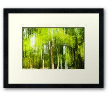 Trees in Motion Framed Print