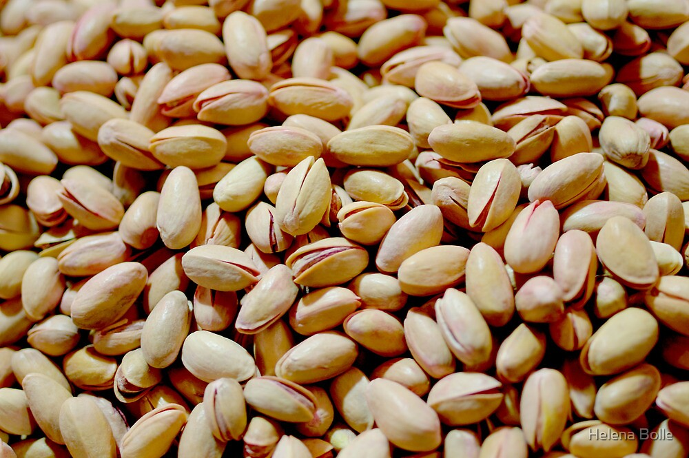 Pistachio Nuts by Helena Bolle