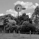 Morrison's Windmill by Linda Lees