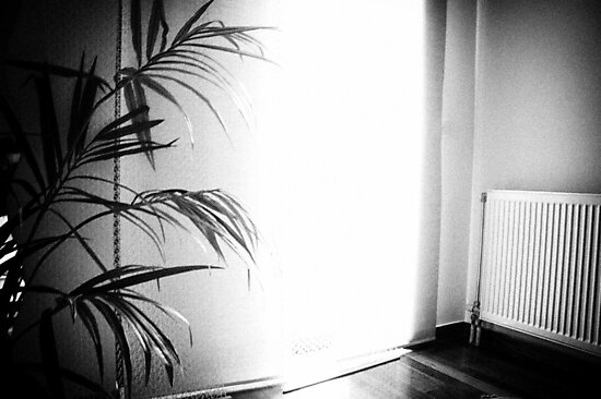 Portrait of  the House I by Vivi Kalomiri