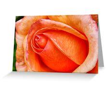 Rose HDR Greeting Card