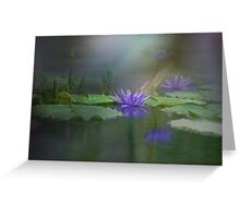 The beautiful pond Greeting Card