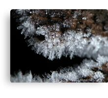 Rime Frost Macro Canvas Print