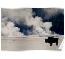 First Frost in Yellowstone Poster