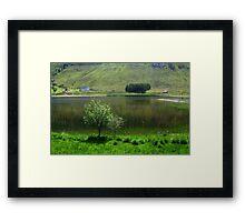 Lake idyll in green  Framed Print