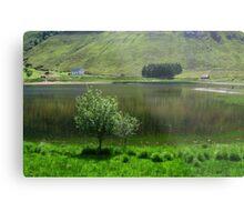 Lake idyll in green  Metal Print