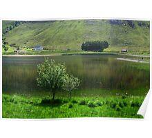Lake idyll in green  Poster
