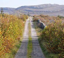Mullaghmore in Autumn by Karin  Funke