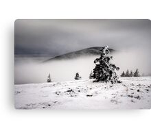 Above the Fog Canvas Print