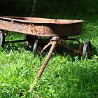 Watch The Paint Peel on My Lil Red Wagon by Jean Gregory  Evans