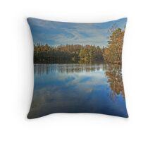 November at High Dam, Finsthwaite Throw Pillow