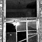 The Sash Window by sarnia2