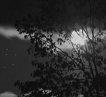 Full Autumn Moon & Stars (B&W) by Gene Walls
