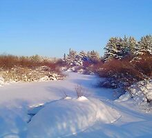 River in January.Sask, Canada by MaeBelle
