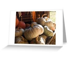 Pumpkins in the Autumn Sunlight Greeting Card