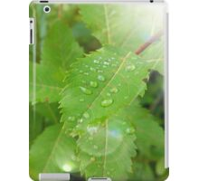 Magical Morning Dew Drops iPad Case/Skin