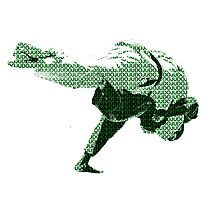 Judo Throw in Gi 2 Green Photographic Print