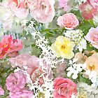 Romantic Vintage Roses by Circe Lucas