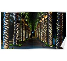 Palm Archway Poster