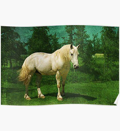 Earthbound Unicorn Poster