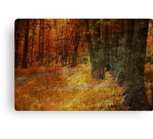 On the Road to Camelot ... Canvas Print