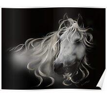 Fantasy White Stallion - Horse Portrait Poster