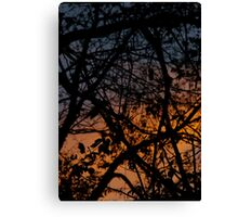 Tree Silhouettes in November Sky, Peach, Orange & Midnight Blue Canvas Print