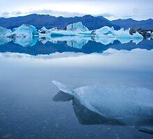 Cool blue - Jökulsárlón, Iceland by Antony Kuzmicich