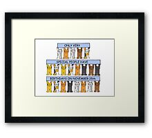 Cats celebrating birthdays on November 25th Framed Print