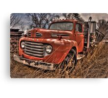 Forty Something Canvas Print