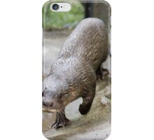 Super Hairy-nosed Otter iPhone Case/Skin