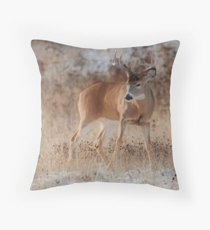 The Challange Throw Pillow