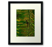 Bird making nest Framed Print