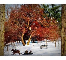 Sleigh Ride In The Snow Photographic Print