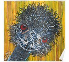 Inquisitive Emu Poster