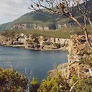 Eagle Hawk Nest - Tasmania by Donna Macarone