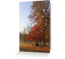 ~ Autumn morning on Church Meadow Greeting Card