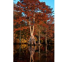 Twins on stilts Photographic Print
