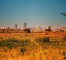Nairobi National Park, Kenya by Atanas Bozhikov NASKO