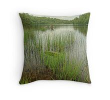 The Grass is Greener.. Throw Pillow