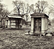 Untitled (Graceland Cemetery) by James Watkins