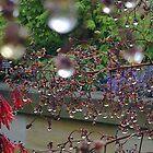 droplets by pantsman