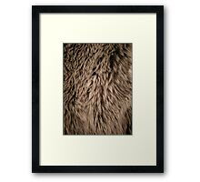 Fluffy Fur Framed Print