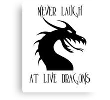 Laugh at Dragons Canvas Print