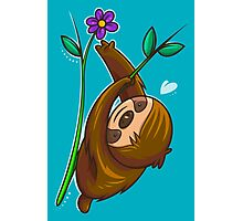 Sloth And Flower Photographic Print